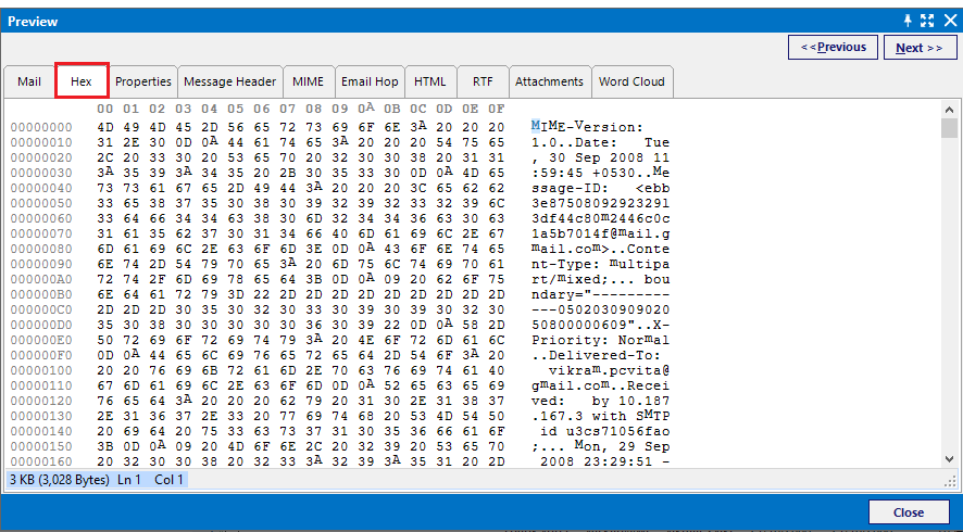 Hex View for Netscape Forensics