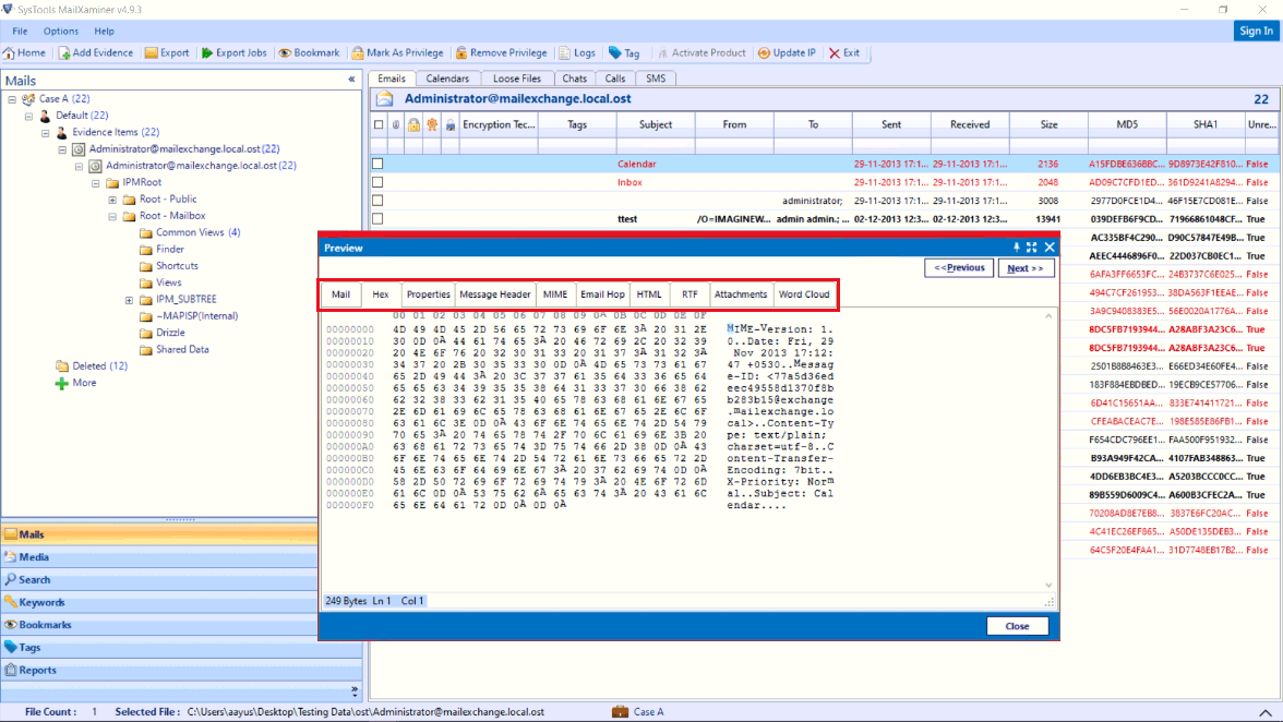 Analyze Recovered File