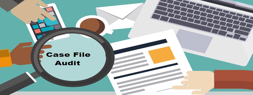 case-file-audit